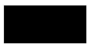 New Logo PBG